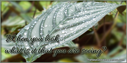 Image - when you look
